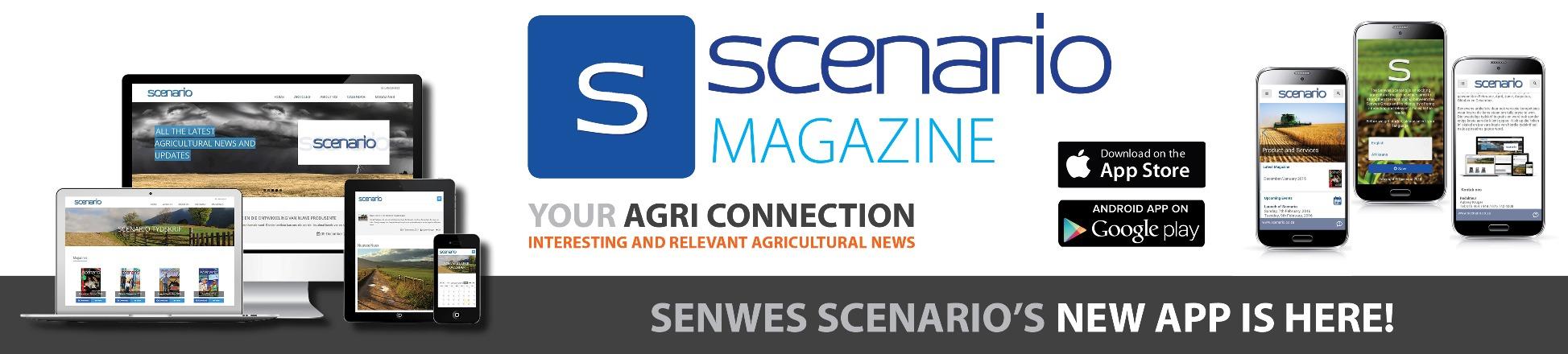 Scenario Magazine App